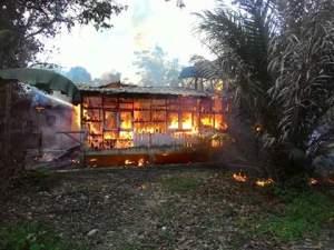 terbakar